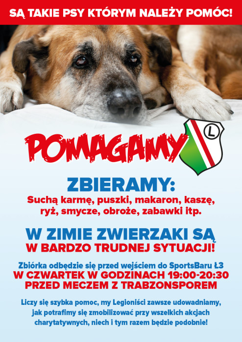 Plakat Pieski